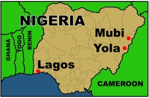 NigeriaEAlert110314_2